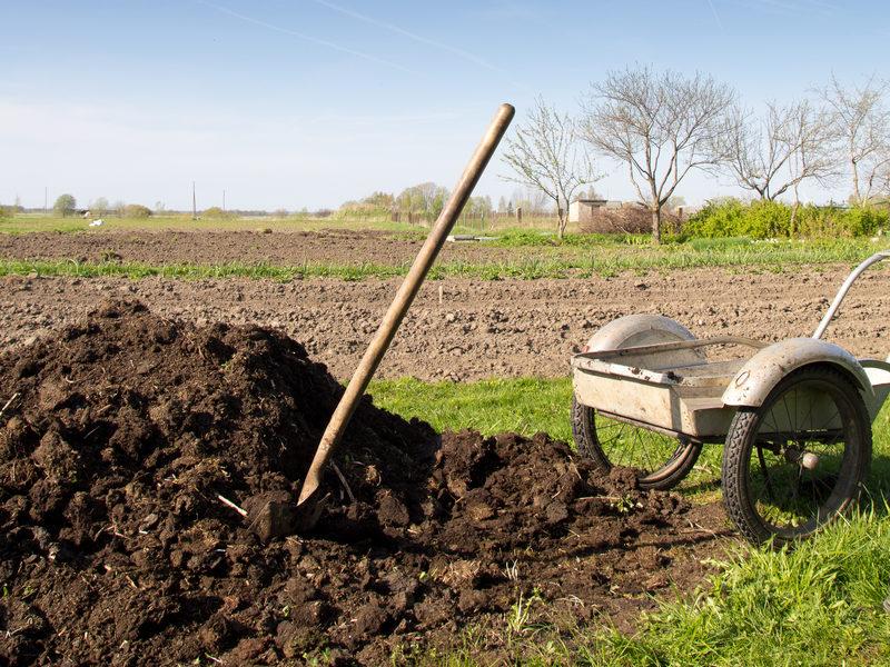 Økologisk gødning til haven